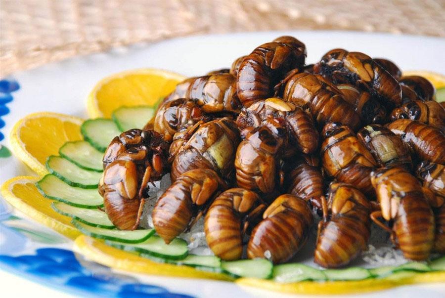 жареные личинки
